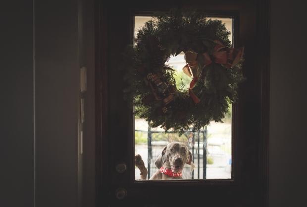 holiday-41